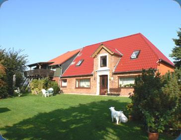 Ferienhaus Halbinsel Eiderstedt mit Hund